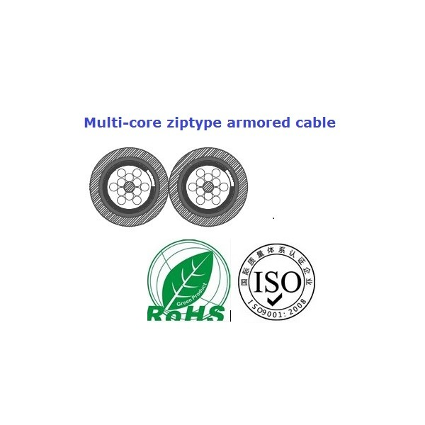 Se 50 75 moreover 425 Multi Fiber Flat Armored Fiber Optical Cable24 Fibers further 20966 Adam Hall Rolling Stones Instrument Cable 6 Mt Neutrik 90 Angled as well Guil Tp300 Ad1 2144 likewise 142069610935. on multicore cable